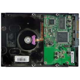 Seagate ID10767 ST3160812AS...